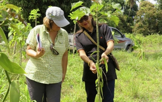 Komoren-Guide Reiseleiterin zeigt eine Touristin in einer Vanille Plantage wie die Vanillellianen an den Stützt